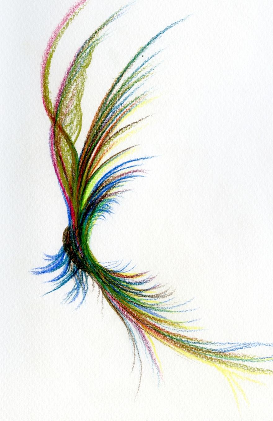 flyingfeathers-w1300px-x-h-2000px